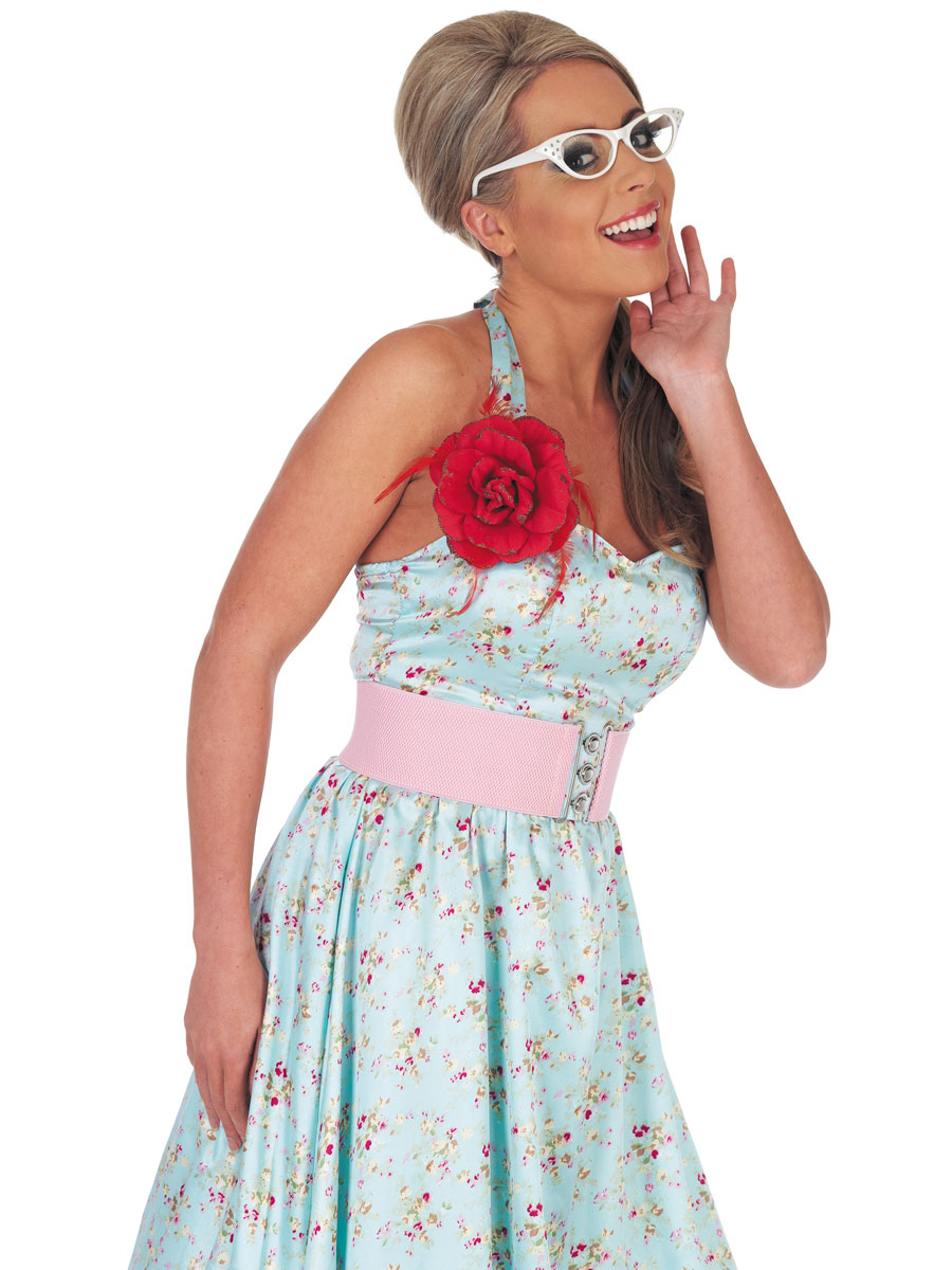 1950s Fancy Dress Plus Size 1950s Fancy Dress