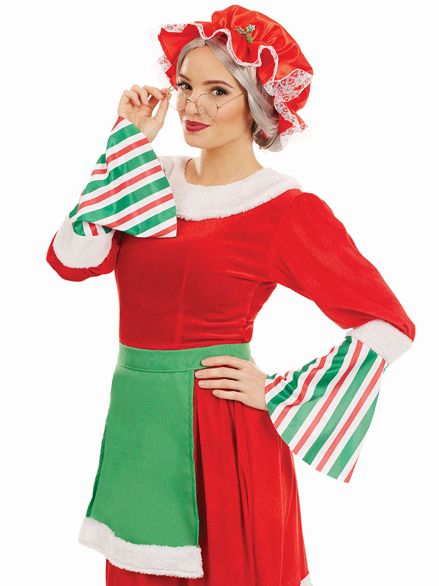Adult Traditional Mrs Claus Costume Fs4222 Fancy Dress