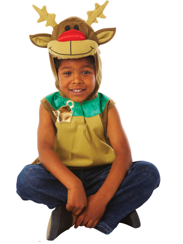 Child Rudolph Costume 995060 Fancy Dress Ball