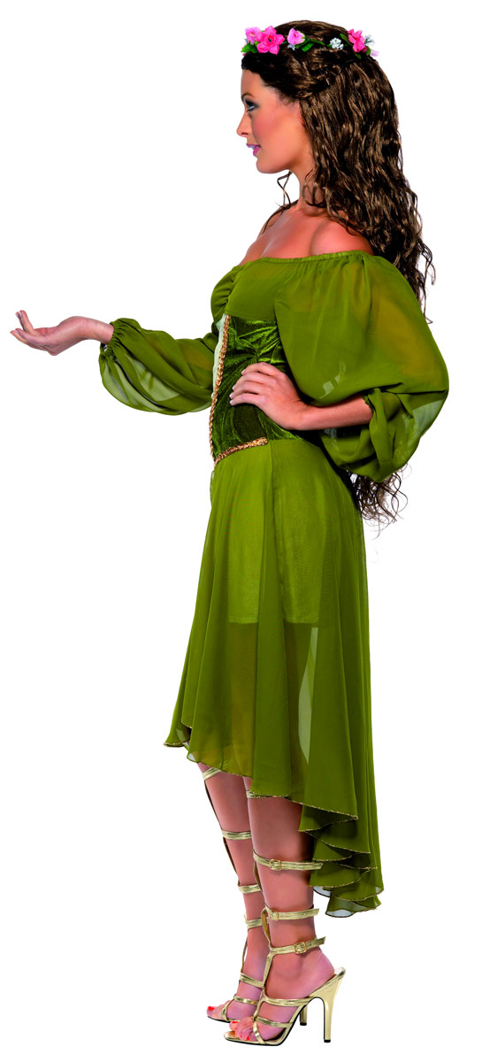 Adult Fair Maiden Costume 33766 Fancy Dress Ball