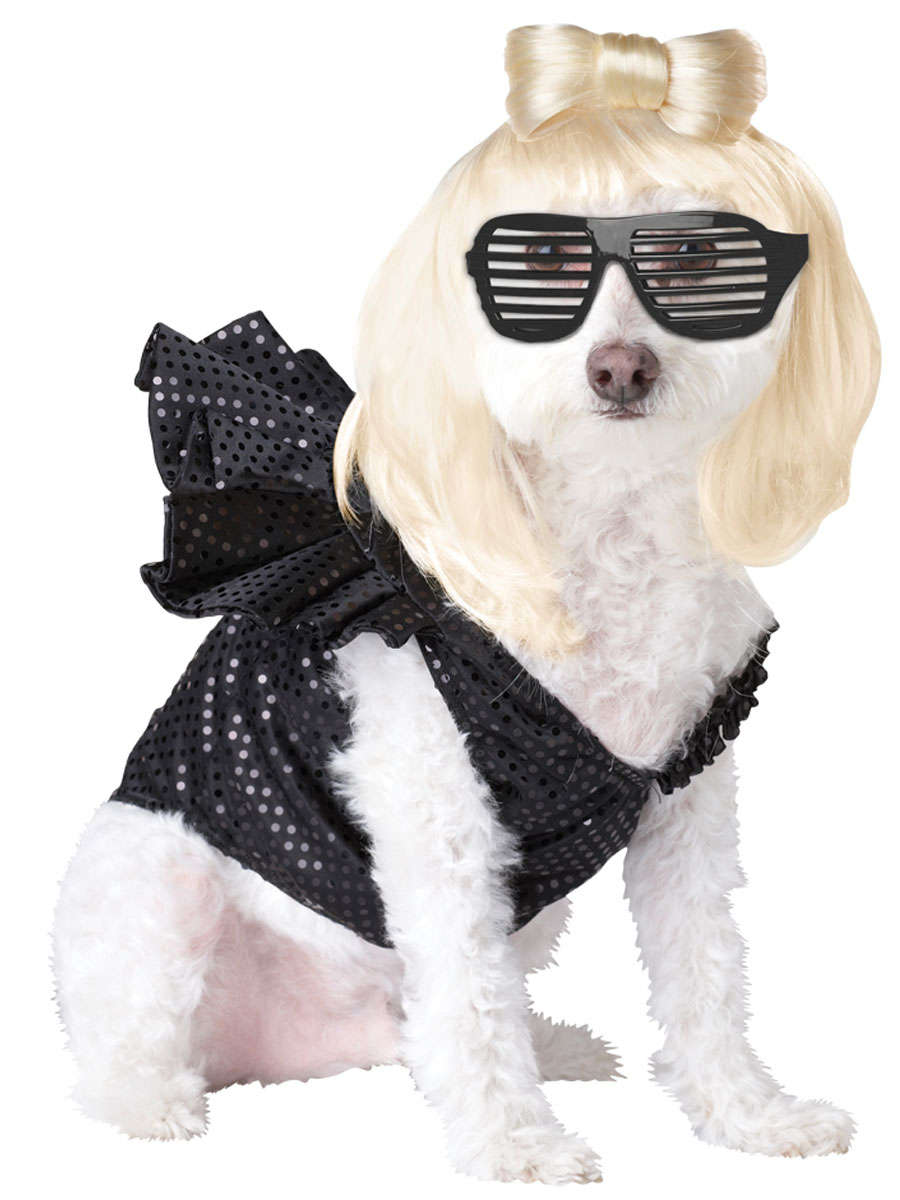 dog lady gaga costume pet20111 fancy dress ball. Black Bedroom Furniture Sets. Home Design Ideas