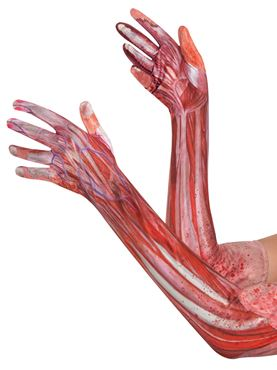 Adult Bloody Muscle Gloves