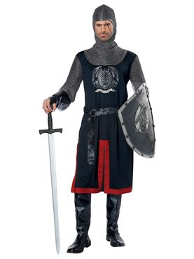 Adult Dragon Knight Costume