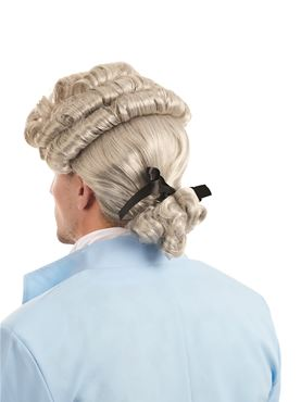 Adult Georgian Man Wig - Back View