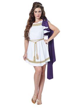 Adult Grecian Toga Dress Costume Couples Costume