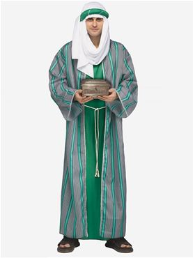Adult Green Wise Man Costume