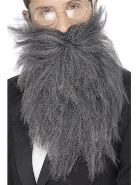 Adult Grey Long Beard And Tash