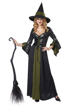 Adult Classic Witch Costume