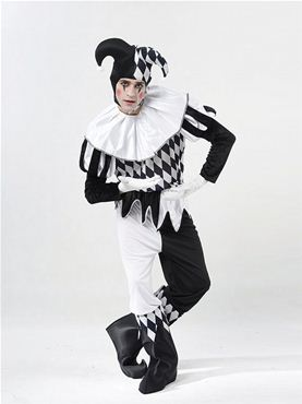 Adult Male Harlequin Costume