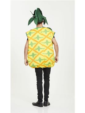 Adult Pineapple Costume - Side View