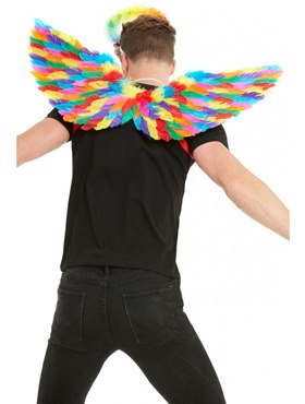 Adult Rainbow Feather Wings - Back View