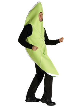 Adult Slice of Lime Costume Couples Costume