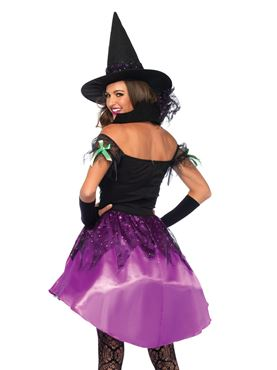 Adult Spiderweb Witch Costume - Back View