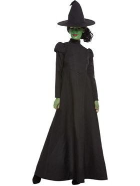 Adult Wicked Witch Costume - Back View