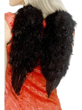 Angel Wings Black Feather