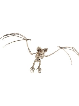 Bat Skeleton Prop