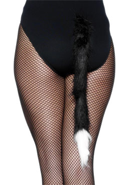 Cats Tail Black