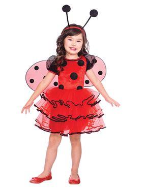 Child Ladybird Costume