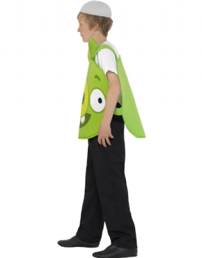 Child Angry Birds Green Pig Costume - Back View