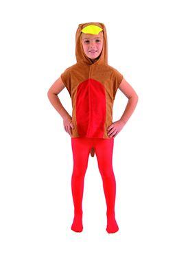 Childs Robin Tabard Costume