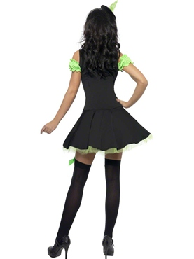 Adult Fever Wicked Witch Green Costume - Back View