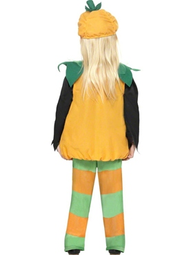 Child Little Pumpkin Toddlers Costume - Back View