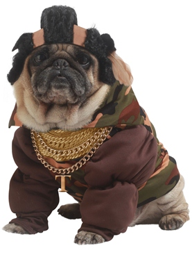 Mr T Dog Costume