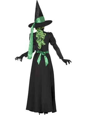 Adult Wicked Witch Costume - Side View