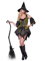 Adult Bewitching Babe Costume