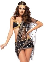 Adult Bollywood Darling Costume