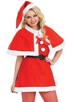 Adult Christmas Cutie Costume