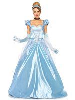 Adult Classic Cinder Costume [85518]