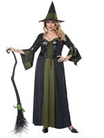 Adult Classic Witch Plus Size Costume