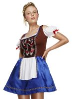 Adult Fever Dirndl Costume