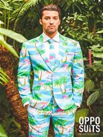 Adult Flaminguy Oppo Suit