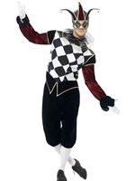 Adult Gothic Venetian Harlequin Male Costume