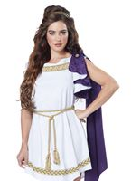 Adult Grecian Toga Dress Costume