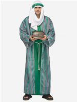 Adult Green Wise Man Costume [131944G]