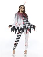 Adult Jester Clown Lady Costume