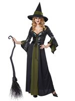 Adult Classic Witch Costume [01350]