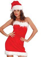 Adult Miss Santa Sexy Costume [AC823]