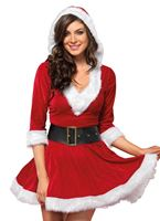 Adult Mrs Claus Costume [85356]