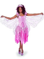 Adult Pink Fairytale Dress Costume