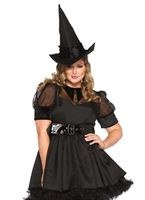 Adult Plus Size Bewitching Witch Costume