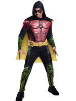 Adult Robin Arkham Costume [884822]