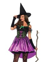 Adult Spiderweb Witch Costume [85606]