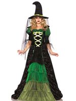 Adult Storybook Witch Costume [85240]