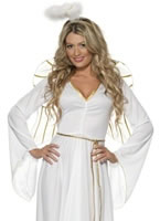 Adult Angel Costume [36977]
