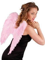 Angel Wings Pink