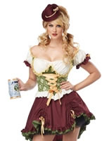 Adult Beer Garden Bavarian Girl Costume